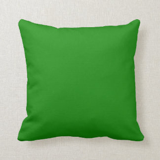 India Green Elegant Solid Color Accent Pillow
