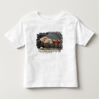 India, Mangalore, Karkala. Jains religion Toddler T-shirt