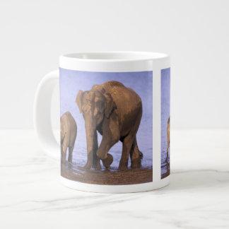 India, Nagarhole National Park. Asian elephant Giant Coffee Mug