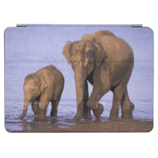India, Nagarhole National Park. Asian elephant iPad Air Cover