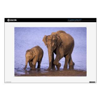"""India, Nagarhole National Park. Asian elephant 15"""" Laptop Skins"""