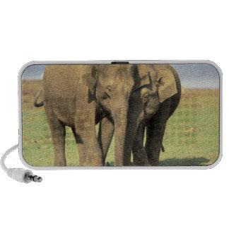 India, Nagarhole National Park. Asian elephant Notebook Speaker