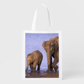 India, Nagarhole National Park. Asian elephant Grocery Bag