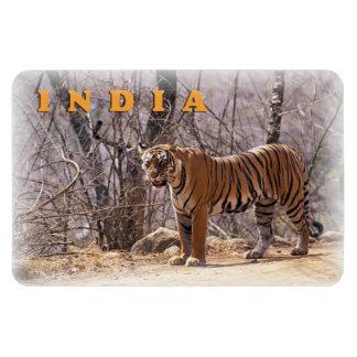 India Rectangular Photo Magnet