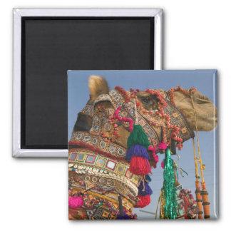 INDIA, Rajasthan, Pushkar: PUSHKAR CAMEL FAIR, 2 Inch Square Magnet