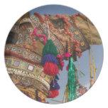 INDIA, Rajasthan, Pushkar: PUSHKAR CAMEL FAIR, Dinner Plate