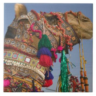 INDIA, Rajasthan, Pushkar: PUSHKAR CAMEL FAIR, Large Square Tile