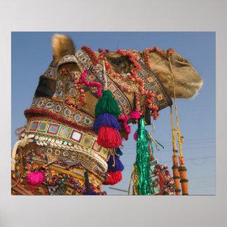 INDIA Rajasthan Pushkar PUSHKAR CAMEL FAIR Posters