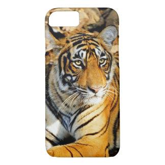 India, Sawai Madhopur, Ranthambore National iPhone 8/7 Case