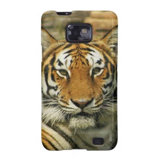 India tiger Peace and calm Samsung Galaxy SII Cover