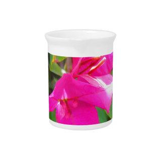 India travel flower bougainvillea floral emblem beverage pitcher