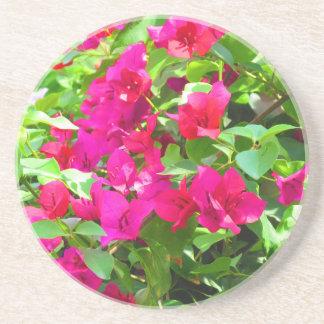 India travel flower bougainvillea floral emblem coaster
