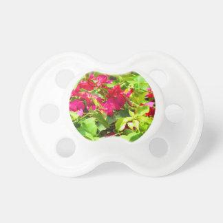 India travel flower bougainvillea floral emblem pacifier