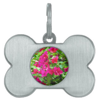 India travel flower bougainvillea floral emblem pet ID tag