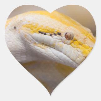 Indian Albino Python Ho Chi Minh City Zoo, Vietnam Heart Sticker