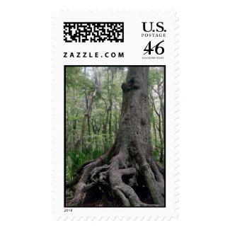 Indian Artifact Stamp