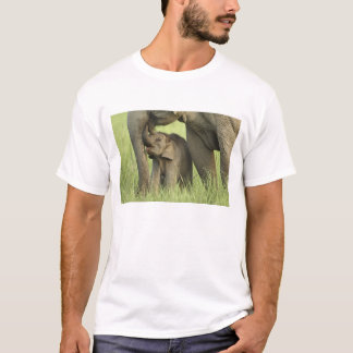 Indian / Asian Elephant and young one,Corbett 2 T-Shirt