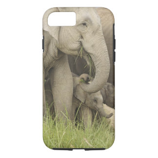 Indian / Asian Elephant and young one,Corbett 3 iPhone 8/7 Case
