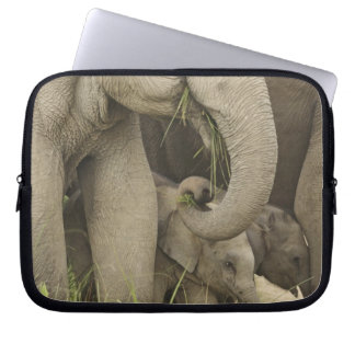 Indian / Asian Elephant and young one,Corbett 3 Laptop Computer Sleeve