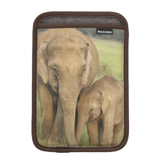 Indian / Asian Elephant and young one,Corbett iPad Mini Sleeve