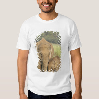 Indian / Asian Elephant and young one,Corbett Tee Shirt