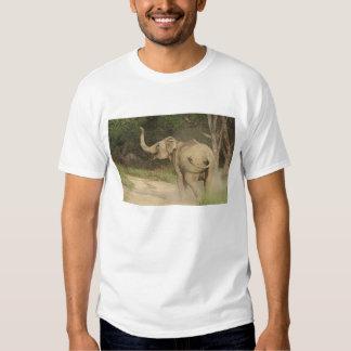 Indian / Asian Elephant communicating,Corbett Tee Shirt