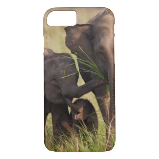 Indian Asian Elephant family in the savannah iPhone 7 Case