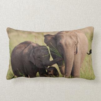 Indian Asian Elephant family in the savannah Lumbar Pillow