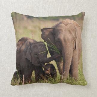 Indian Asian Elephant family in the savannah Throw Pillow
