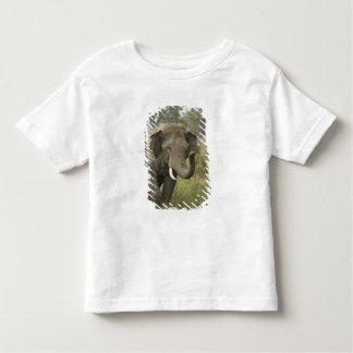 Indian / Asian Elephant greeting,Corbett Toddler T-shirt