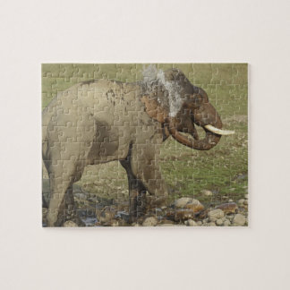 Indian / Asian Elephant spraying water,Corbett Puzzles