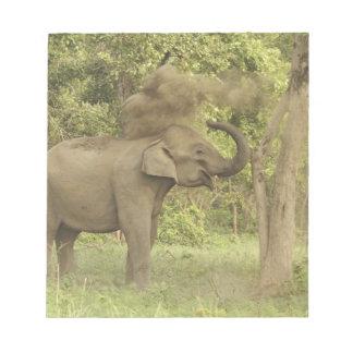 Indian / Asian Elephant taking dust bath,Corbett Memo Note Pads