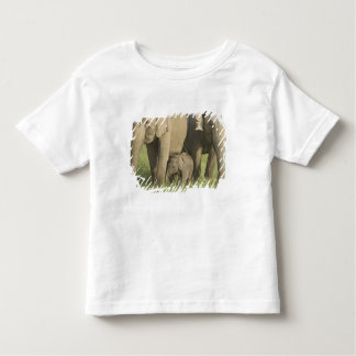 Indian / Asian Elephants and young one,Corbett Tee Shirt