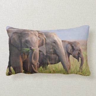 Indian Asian Elephants displaying grass Lumbar Pillow