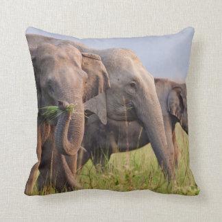 Indian Asian Elephants displaying grass Throw Pillow