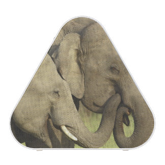 Indian / Asian Elephants sharing a Speaker