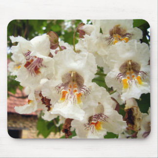 Indian Bean Tree Flowers Mouse Mat
