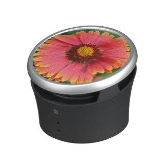 Indian Blanket Wildflower Bumpster Speaker