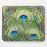 Indian Blue Peacock Feathers Mouse Mat