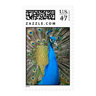 Indian Blue Peacock Postage