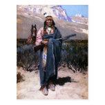 Indian Brave 1891 Postcards