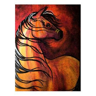 Indian Buckskin War Horse Postcard