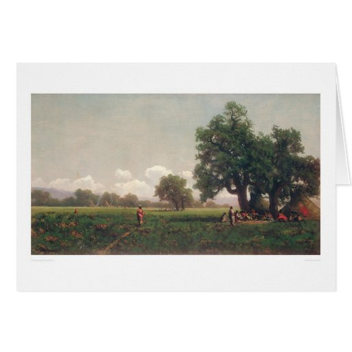 Indian Camps (0716A) Greeting Card