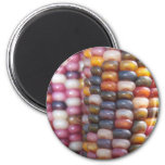 Indian Corn 2 Inch Round Magnet