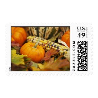 Indian Corn And Pumpkins Stamp