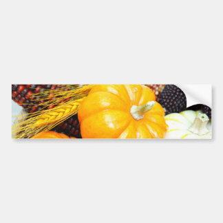 Indian Corn And Small Pumpkins Bumper Sticker