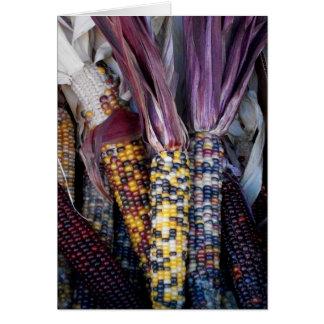 'Indian Corn' Blank Greeting Card
