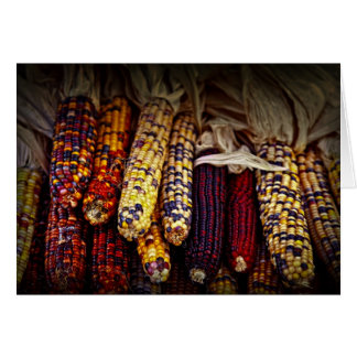 Indian corn greeting cards