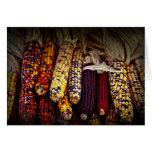 Indian corn greeting cards