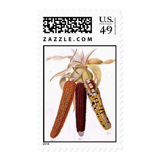 Indian Corn Postage